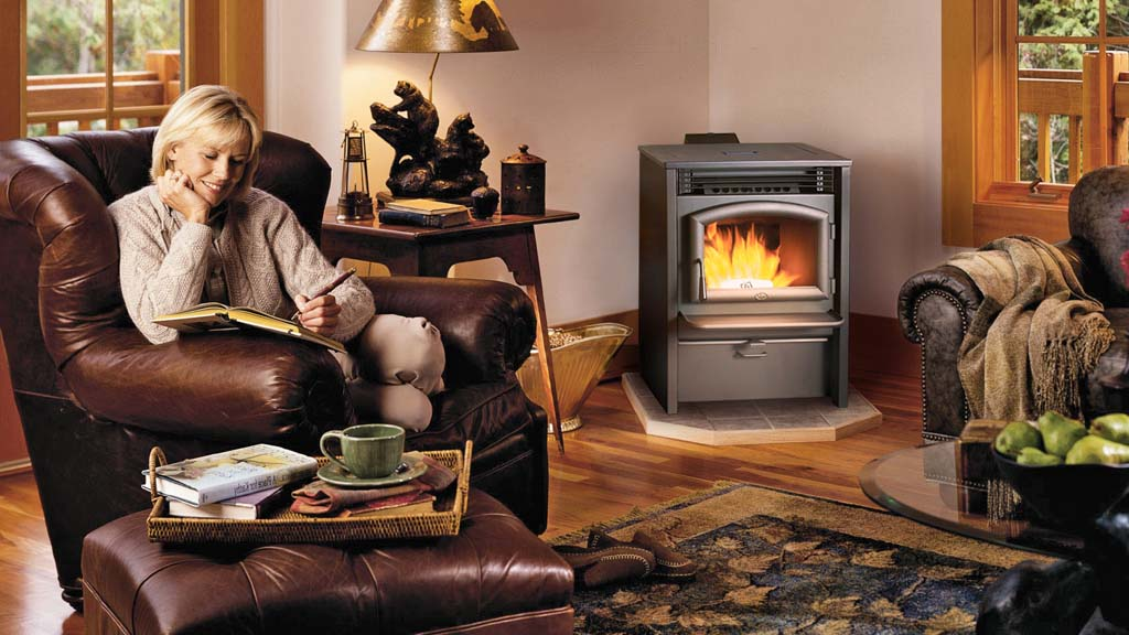 Wood & Gas Stove service.